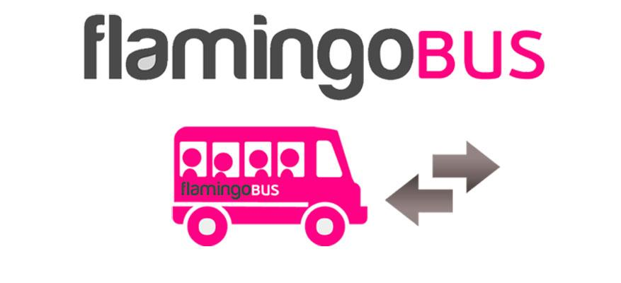 Free transition with Flamingo Bus